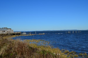 Willapa Bay - Well known for it's oysters