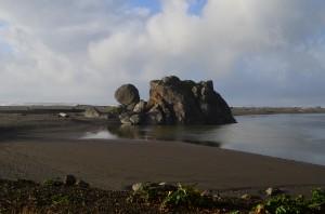 Turtle Rock!