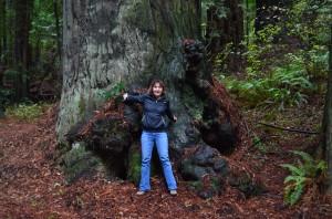 Tree hugger #2