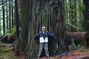 Tree hugger #1