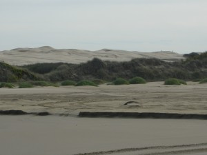 Massive Dunes - Oceano CA