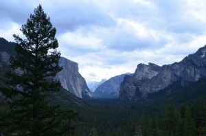 A view in Yosemite Valley and all the different mountains within it