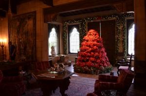 The Morning Room - a poinsettia tree