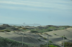 A few more miles north to the Elephant Seal Rookery at Piedras Blancos