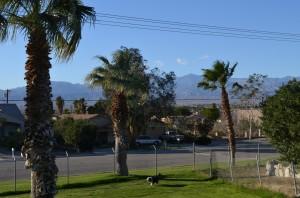 Mountain range behind park
