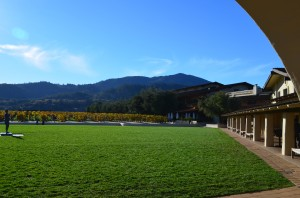We have arrived at Mondavi Winery
