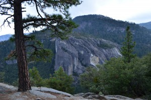 First glimpse of Yosemite's awesome views