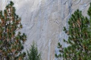 El Capitan - 3,000 of sheer rock face straight up