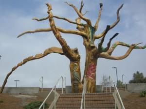 The Magnificant Magnolia
