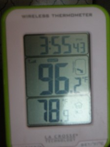 Temps outside and inside the RV