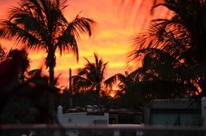 Last sunset-Grassy Key